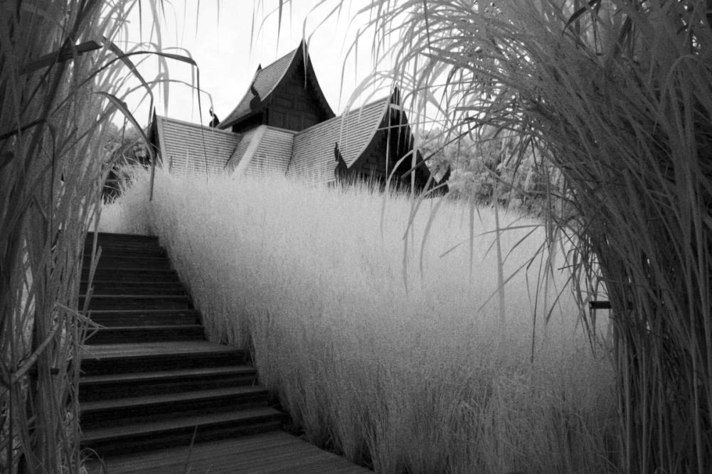 #071 Chiang Mai, Thailand.
