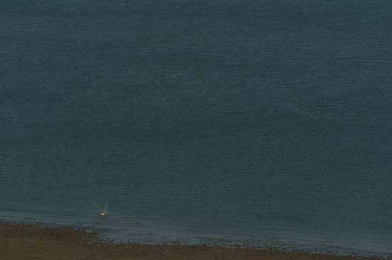 Fisherman casting his net. X-Pro2 + XF50-140mm + 1.4 TC